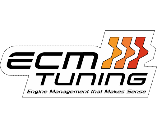ECM Logo Large Colored